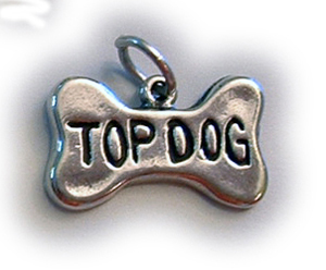 Sterling Silver TOP DOG BONE Charm
